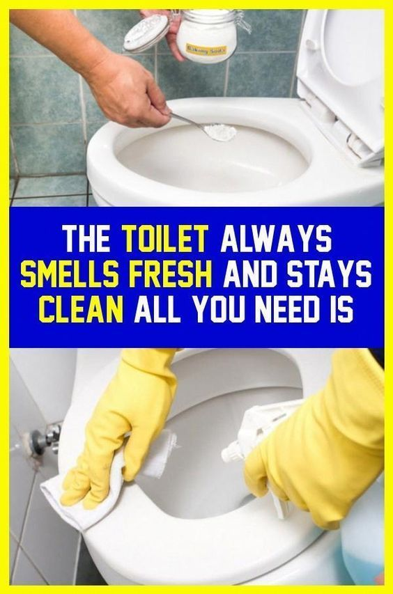 Make The Toilet Always To Smells Fresh And Stays Clean Here Is How Always Cle In 2020 At Home Workout Plan Smell Fresh