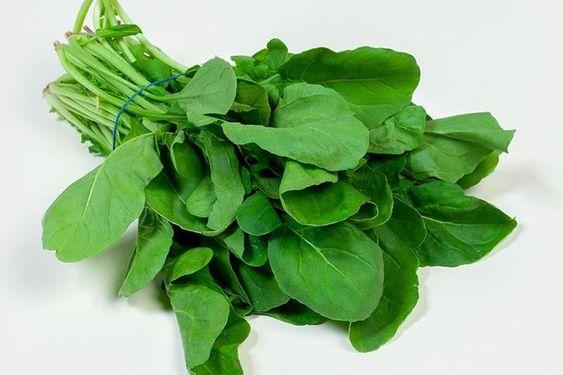 ماهي فوائد الجرجير للجسم للتنحيف للشعر Watercress Green Vegetables Rich In Protein