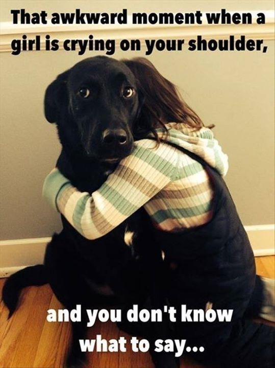 Rescuedog Dog Itsarescuedoglife Funny Dogs Funny Animals Funny Cute