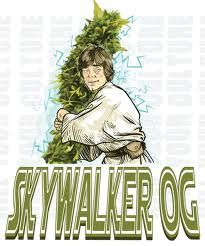 Skywalker's OG father is… Skywalker! (That's not a spoiler, right? We've all seen the movie.) This indica-heavy strain takes stoners to a galaxy far, far away with its jet-fuel aromas.