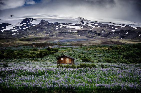 Trending: Lonely Houses The editors have noticed an influx of images of secluded houses against some truly breathtaking landscapes. From Iceland to India, even the most social butterfly couldn't resist this sweet solitude.  Photographs by Brandon B., Fabio Di Carlo, aswin vn, Irene Becker, Ulrich Lambert, Grégoire Sieuw, Michael Schmidt, and jassen t..
