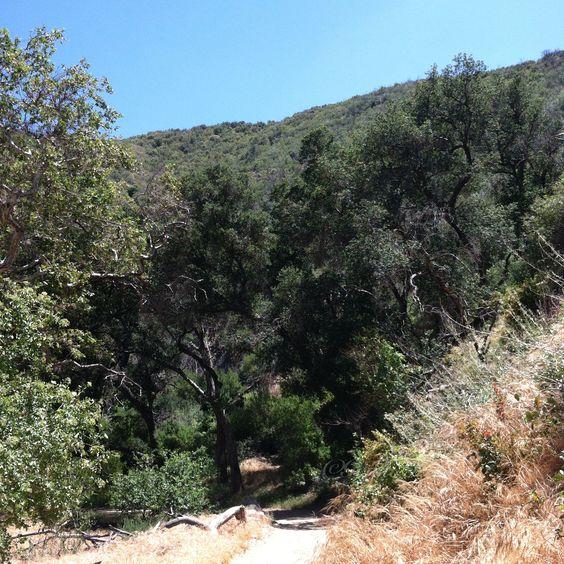 Hiking Placerita Canyon State Park, near Santa Clarita, California. (Free)