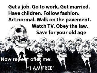 "Not only are you ""free,"" but you're also ignorant and fucking boring!!...¡¡No sólo están ""libres"" pero también son ignorante y muy aburrido!!"