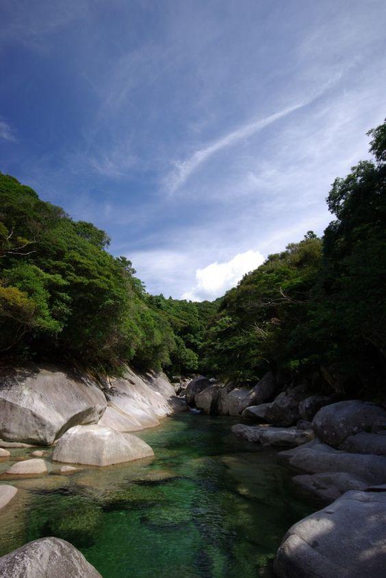 Yakushima – Patrimônio da Humanidade #4 Made in Japan