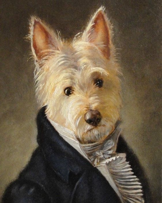ridiculous, but I couldn't help post it. It's a Westie as Mr. Darcy. I love them both, but together?