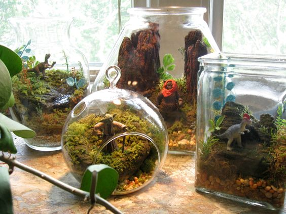 Star Wars Terrariums With Your Favorite Characters On Their Home Planets