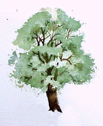 Watercolor Tips: Painting Trees