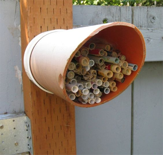 Mason Bee House Tube Style Use Pvc Develop A Design And