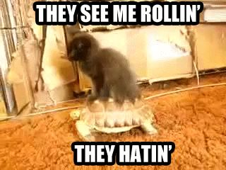 They See Me Rollin...They Hatin! LOL!