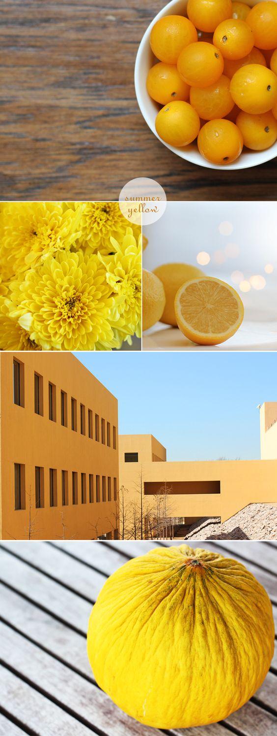 summer yellow photos