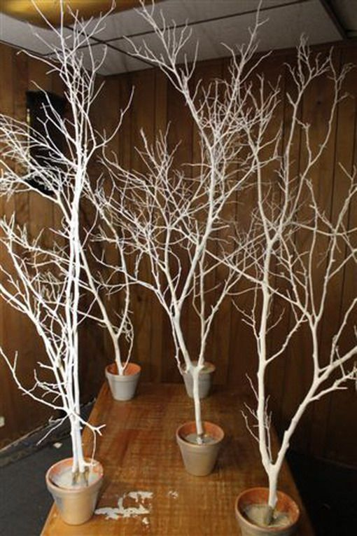 Spray Paint Branches White Silver And Put In Pots Outside Venue With Fairy Lights And Snowflakes