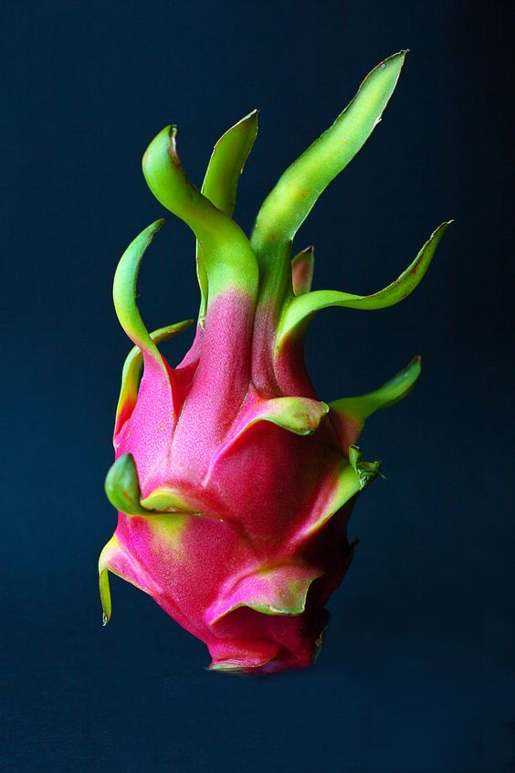 Dragon Fruit. Andrew Scrivani for the New York Times. Dragon fruits are delicious... and apparently look a bit like human hearts.:
