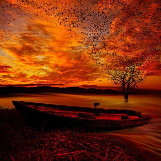 Universo de Luz y Amor: REFLEXIÓN DEL DÍA