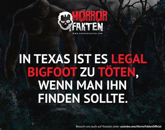❝Texaner dürfen auch wohl alles abknallen..Glaubt ihr an Bigfoot?❞  #horrorfakten #horror #fakten  (hier: Texas City, Texas)