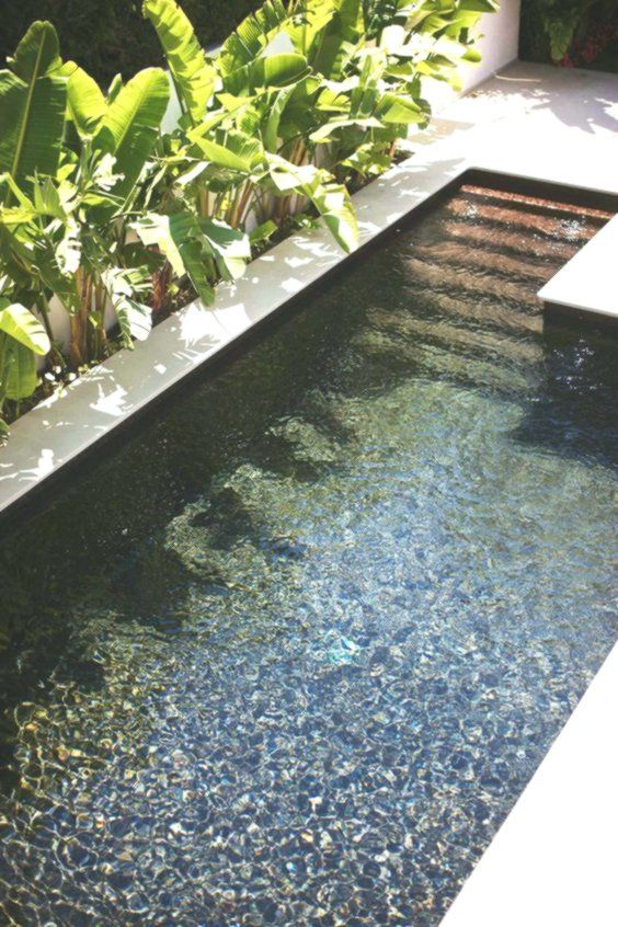Minimalist Outdoor Plunge Pool With A White Edge Edge Minimalist Outdoor Plunge Pool Whi Small Pool Design Swimming Pools Backyard Small Backyard Pools