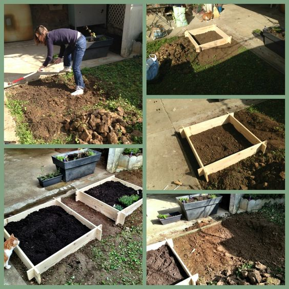Construction d'un carré potager