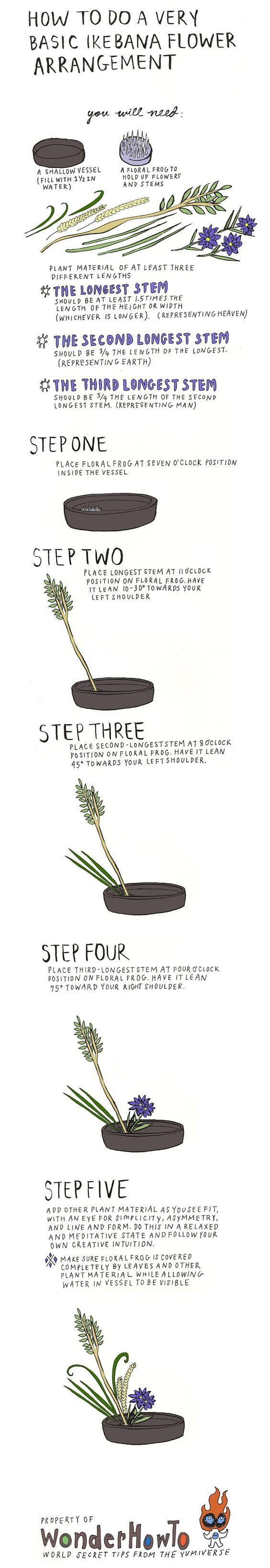 infografía para hacer un arreglo de ikebana.