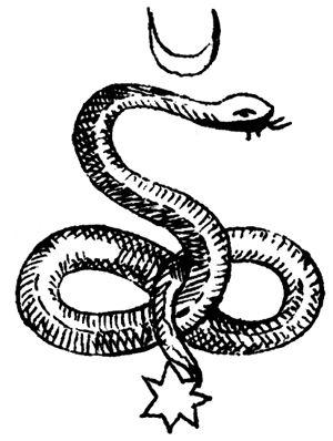 Heraldic Snake Symbol Stock Vector - Image: 45694440