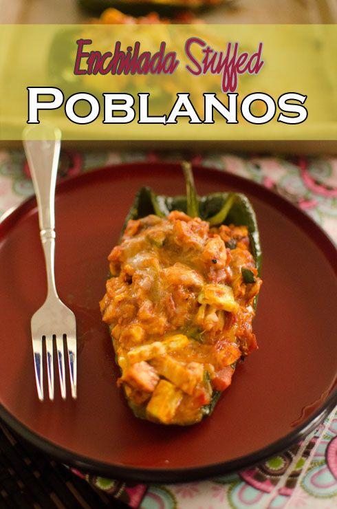 Enchiladas, Enchilada sauce and Cheese on Pinterest