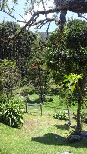 Country Minas Gerais