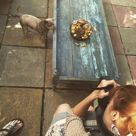 Photo Pigeon Atelier (pigeonatelier)   iPhoneogram