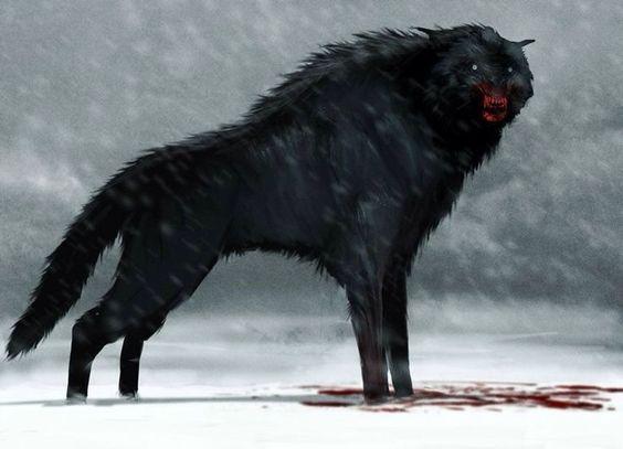 Direwolf Werewolf Art Fantasy Creatures Dire Wolf