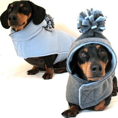 Perfect Design For Doxies   No Sleeves to come out of !! Yeah !!