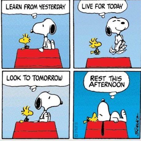 Snoopy wisdom...♥ï¸Â