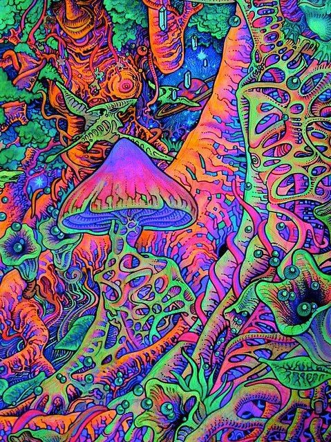 Hippie Artists Psychedelic Art Pinterest