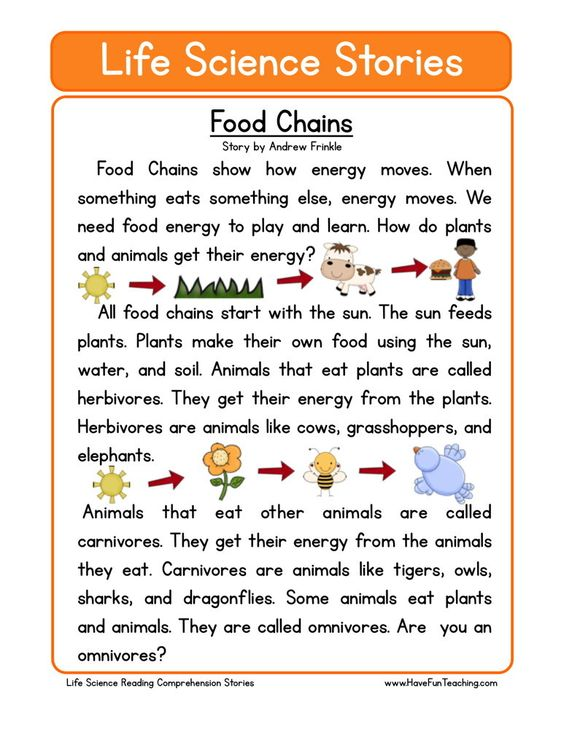 Worksheet Biology Reading Comprehension Worksheets first grade reading comprehension and food chains on pinterest this worksheet is for teaching use reading