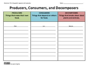 Producers, Consumers, Decomposers Graphic Organizer | Graphic ...