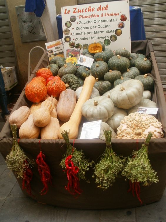 """It's September and the morning farmers market here in Arezzo has """"magically"""" transformed into a bounty of autumn harvest!"""