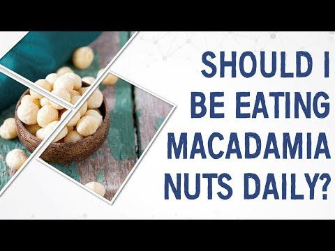 Ask Dr Gundry Should I Be Eating Macadamia Nuts Daily Youtube Macadamia Nuts Macadamia Eat