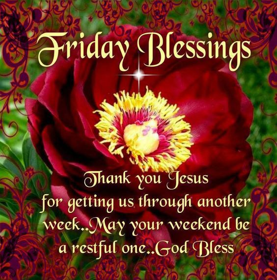 Good Morning, Happy Friday, I pray that you have a safe and blessed day!!