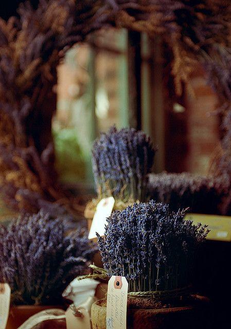 French lavender #Home #French #Decor www.IrvineHomeBlog.com/HomeDecor/ ༺༺ ❤ ℭƘ ༻༻