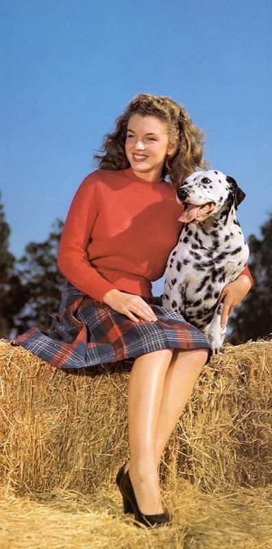 Marilyn Monroe and a Dalmatian