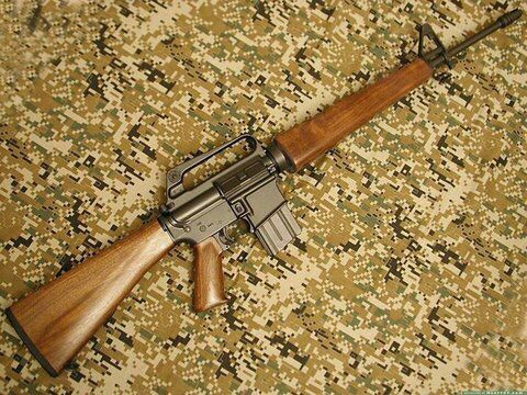 looks like the Service Rifle from Fallout New Vegas lol