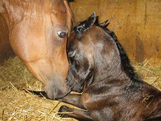 Mama LOVE <3