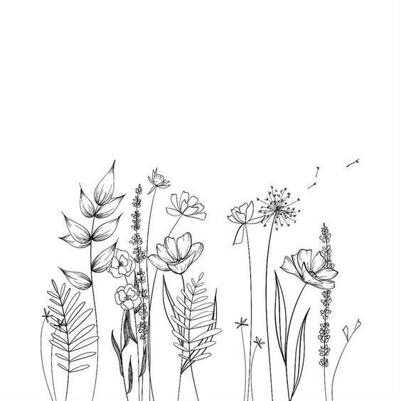 30 Ways To Draw Flowers Flower Line Drawings Easy Flower Drawings Simple Flower Drawing