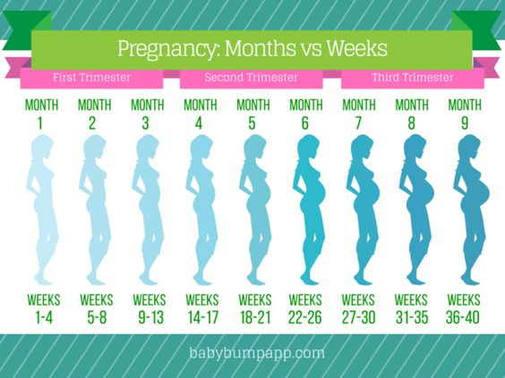 Month By Month Pregnant 115