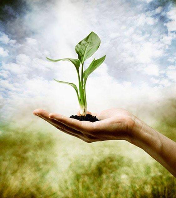 """""""Uma pessoa próspera não tem medo da escassez. Ela é sempre generosa, e sempre dá com alegria, torcendo para que o outro faça bom uso, para que ele seja feliz. Se você está vibrando na confiança, você sabe que é possível ser próspero junto com o outro, porque percebe que a fonte é infinita - não existe falta no mundo de Deus."""" Sri Prem Baba"""
