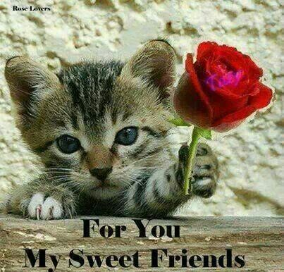 For you my sweet friends :) ♥
