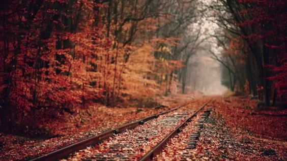 Indie/Indie-Folk Compilation - Fall 2014 (Tracklist Included)