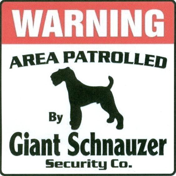 Cool!!  Giant Sign - Giant Schnauzer Fan Art (31115854) - Fanpop