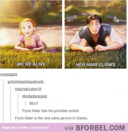 Flynn Rider, The Only Sane Person In Disney AND he questions why everyone randomly bursts out singing