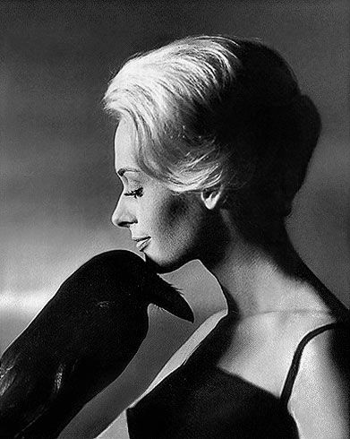 Tippi and her famous co-star #thebirds #hitchcock