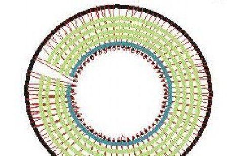 Telar Boina Telar Circular | Scribd