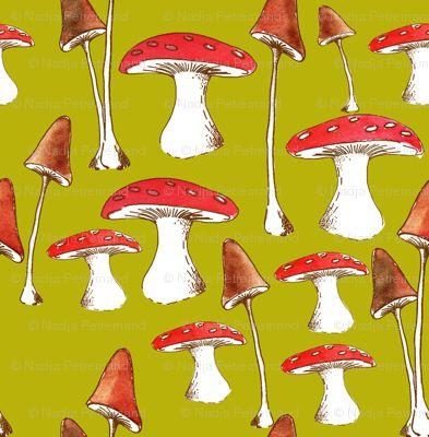 champignons_mignons_fond_vert_L  nadja_petremand