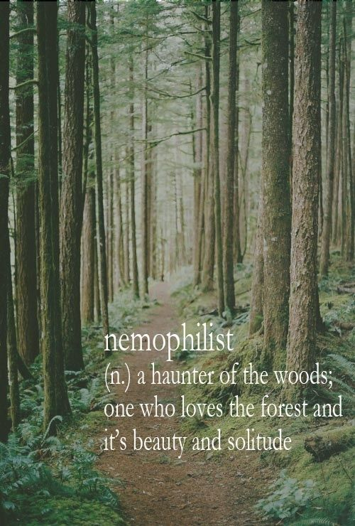 nemophilist, now this is a cool new word