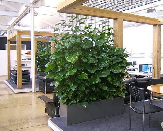 озеленення офісів